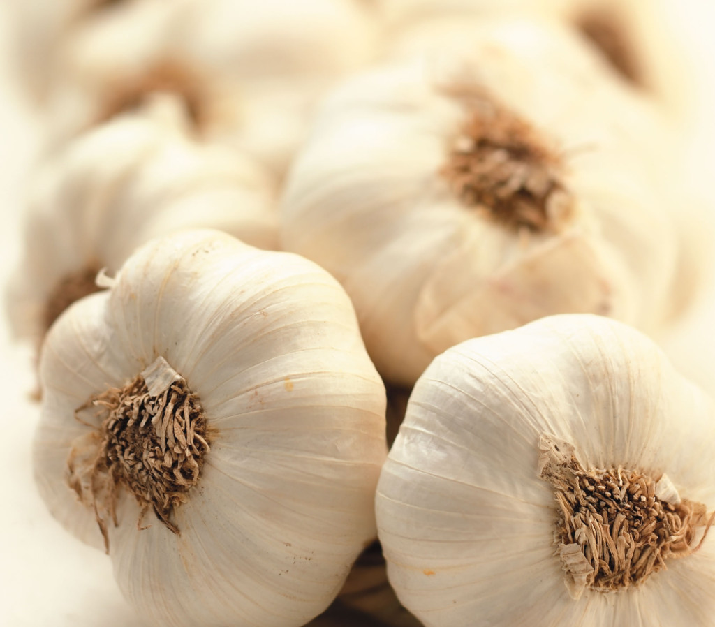 I love garlic :)